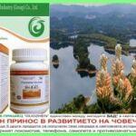 Здраве от Природата