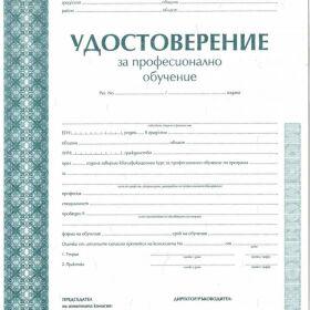 """курс """"МАЗИЛКИ И ШПАКЛОВКИ"""" Дистанционно обучение"""